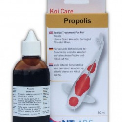 NT Labs Propolis Wound Sealer