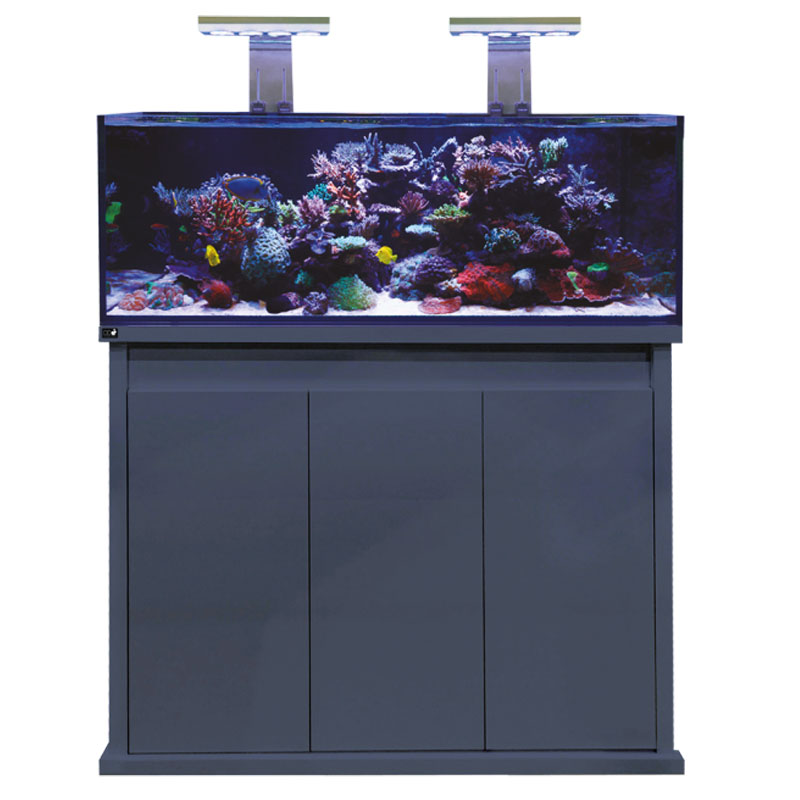 D-D REEF-PRO 1200 - Anthracite Gloss
