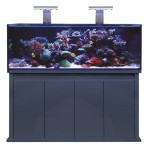 D-D REEF-PRO 1500S - Anthracite Gloss