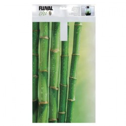 Fluval Chi Bamboo Background