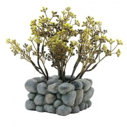 Fluval Chi Plant & Pebble Base Ornament