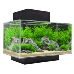 Fluval Edge 23 Litre Black Aquarium