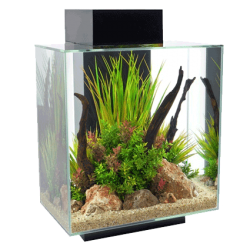 Fluval Edge 46 Litre Black Aquarium