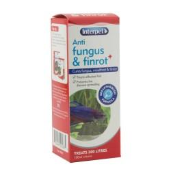 Interpet Anti Fungus & Finrot 100ml