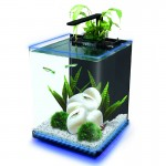 Interpet Edge Glow 18 Litre Aquarium Kit