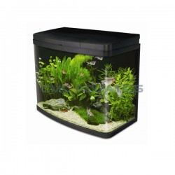 Interpet Insight LED 40 Litre Aquarium Kit