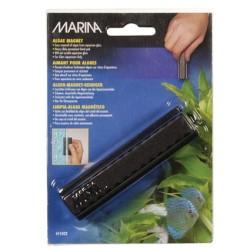Marina Medium Algae Magnet