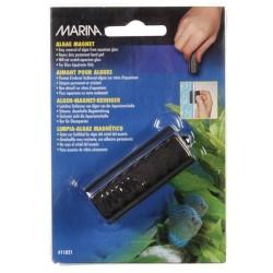 Marina Small Algae Magnet