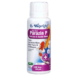 Waterlife Parazin P - 80 Tablets