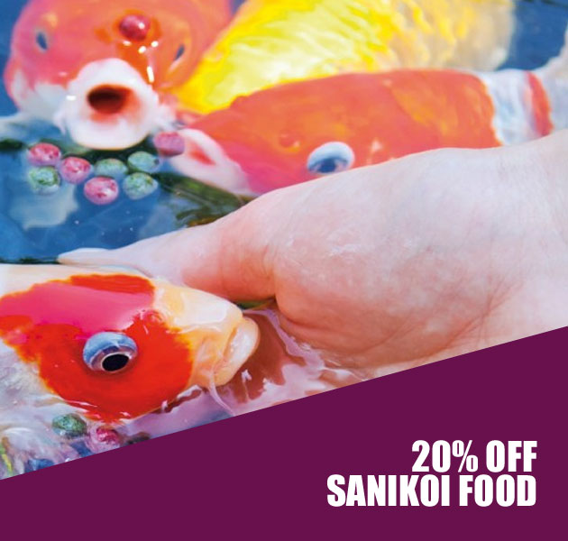 20% OFF SANIKOI FISH FOOD